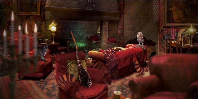 Quel portrait garde l'entrée de la tour de Gryffondor ?