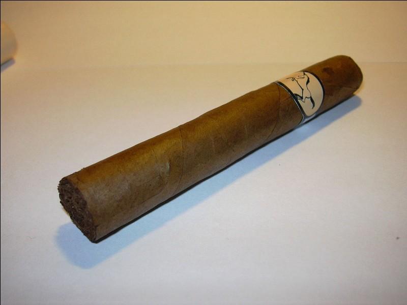 Quel est le nom de la feuille qui entoure un cigare ?