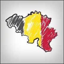 Les Flamands ne peuvent pas voter pour les partis francophones !