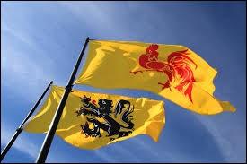 Les Wallons sont plus nombreux que les Flamands !