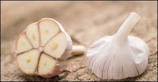 L'ail est originaire d'Asie centrale, il aurait été utilisé depuis...