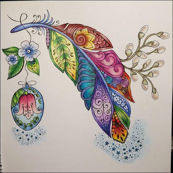 De quelle couleur est l'eider, dont les plumes et duvets sont très recherchés pour le rembourrage des édredons et vêtements d'hiver ?