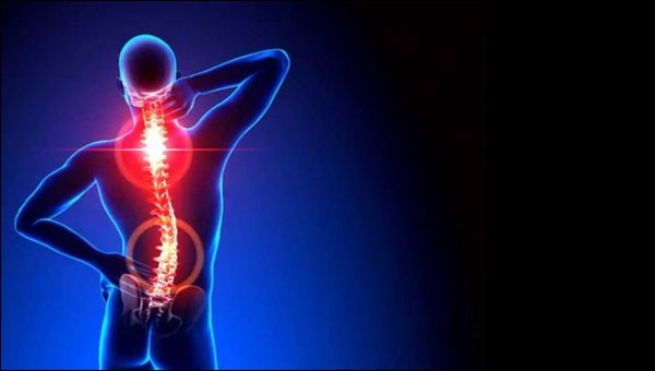 Les troubles musculo-squelettiques sont des maladies qui atteignent les os et les muscles :