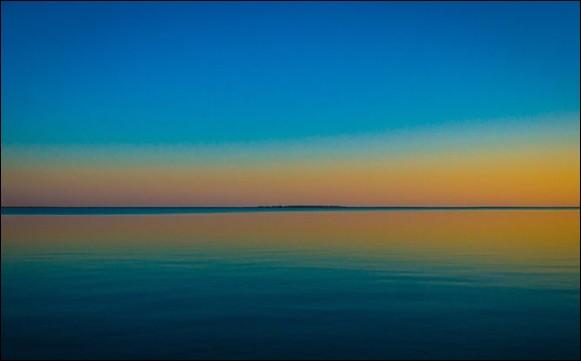 Le lac Tchany (en Sibérie du sud) abrite une foultitude d'oiseaux rares. Lequel est le plus rare (parce qu'il n'existe PAS) ?