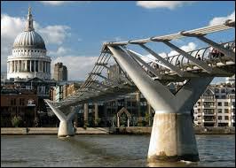 Le Millenium Bridge est une passerelle réservée aux piétons.Quel fleuve traverse-t-elle ?Indice : la passerelle a été détruite par les Mangemorts.