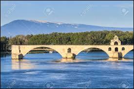 On y danse tous en rond !Quel est le véritable nom du pont d'Avignon ?