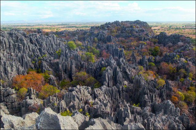 A présent, je vous invite à remonter de l'autre côté du continent, le long de la côte Est. Nous nous arrêtons sur une immense île connue de tous... Madagascar ! Tout à fait au Nord de l'île se situe une réserve naturelle à caractère sacré. Elle présente un grand intérêt géologique, en raison de ses grottes datant du Jurassique. Il s'agit...