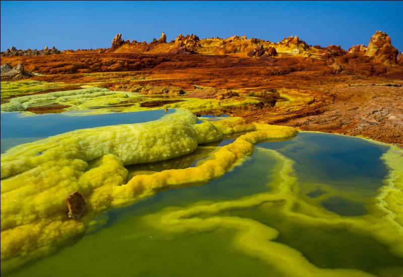 Nous poursuivons toujours vers le Nord, pour faire une dernière escale : l'Ethiopie ! Je vous emmène découvrir une zone naturelle extrêmement intéressante. Cette plaine de 10 000 km² abrite des milieux variés, comme des sources chaudes, des volcans... Cet espace est considéré comme le berceau de l'humanité : c'est ici que l'on a découvert le célèbre squelette de Lucy ! Il s'agit...