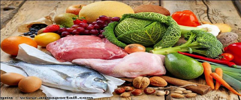 L'être humain est dit [....] dans son régime alimentaire, hormis les choix personnels, s'entend.