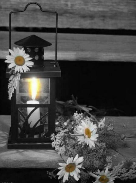 Enfin, si vous jouez mes quiz tard le soir, et que de peur que votre lampe de bureau ne gaspille trop d'électricité, vous jouez à la lueur d'une bougie :