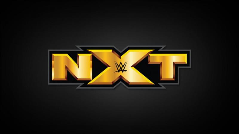 Quelles sont les couleurs du logo NXT ?
