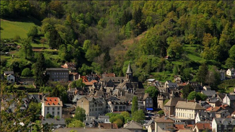 Cette commune auvergnate de 1800 habitants, située à 650 mètres d'altitude sur les pentes du plomb du Cantal et du Puy Mary, c'est ...