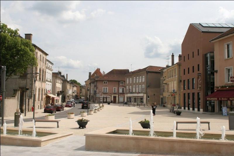Cette commune de 1300 habitants du département de la Moselle, située dans la plaine du Saulnois, traversée par un affluent de la Moselle, c'est ...