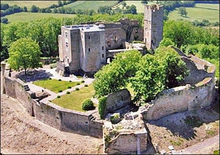 Ce village d'à peine 200 habitants se trouve dans le département de la Côte-d'Or. Le château féodal à quelques centaines de mètres de la collégiale fortifiée surplombe tout l'Auxois. Il s'agit de ...