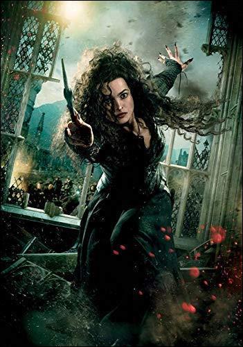 Qui n'a pas de lien de sang avec Bellatrix Lestrange ?