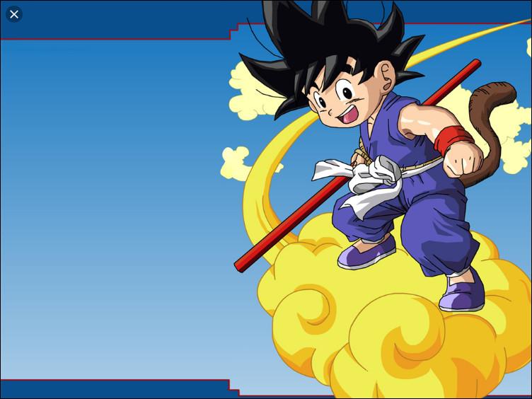 [LEVEL 2] Quelle personne Goku rencontre-t-il en premier ?