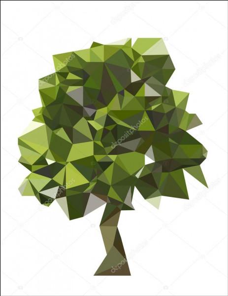 Comment appelle-t-on un polygone à 100 côtés ?