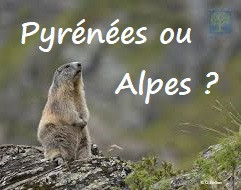 Alpes ou Pyrénées ? (1)