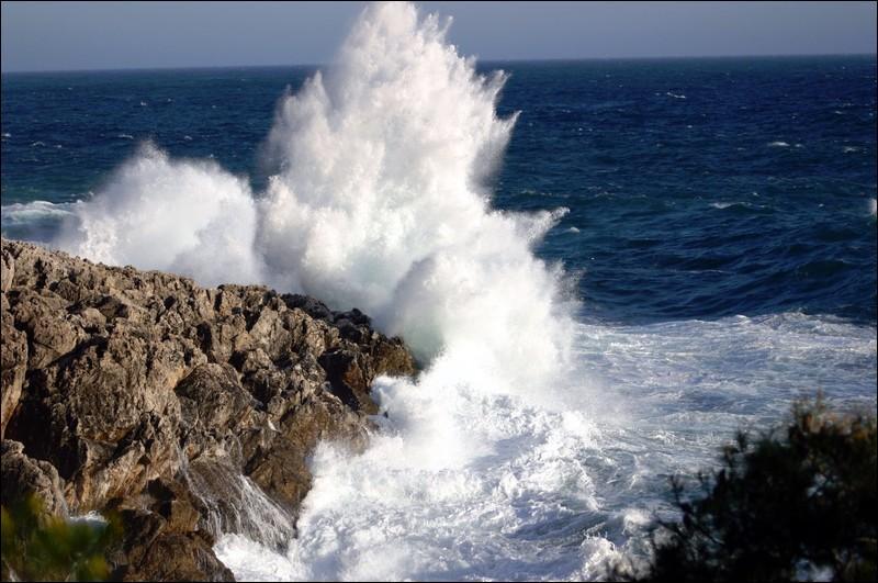 Les vagues qui déferlent sur le rivage et s'y écrasent bruyamment s'appellent ...