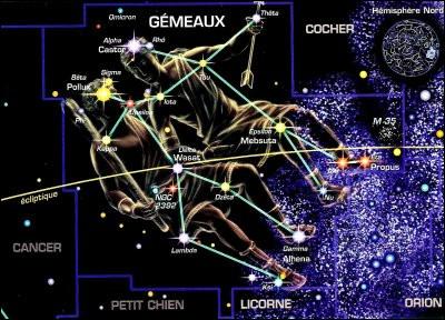Dans la mythologie grecque, qui sont Castor et Pollux ?