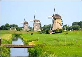 Quel terme néerlandais désignant une terre gagnée sur la mer est entré dans la langue française ?