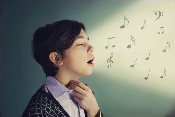 "Qui chante ""Mademoiselle chante le blues"" ?"