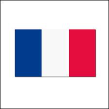 Quel est le joueur français de l'année 2019 ?