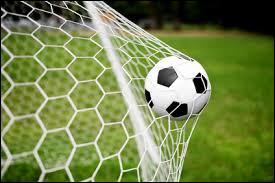 Quel est le plus gros score de football dans un match officiel ?