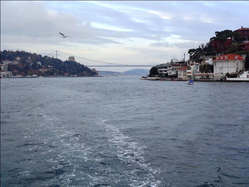 """Le détroit du Bosphore arrose Istanbul et relie la mer Noire au nord à la mer de Marmara au sud. Selon son étymologie grecque, que signifie le nom """"Bosphore"""" ?"""