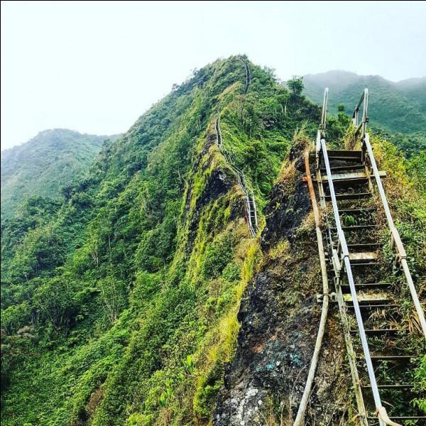 Les 3 970 marches de la montagne Oahu's Koolau ont été construites par l'armée ... en 1942 sur l'île ... et baptisées d'un nom qui deviendra célèbre. Lequel ?