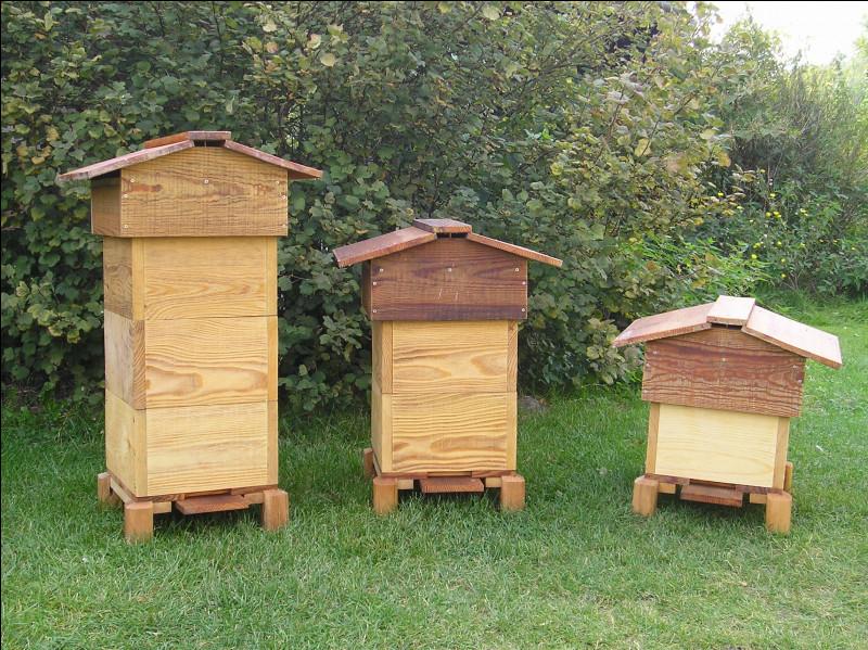 Où vivent les abeilles ?
