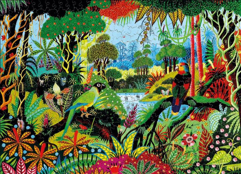 """On termine avec """"Perruche et amazone"""", splendide toile colorée et naïve de l'artiste :"""