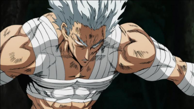 Lorsqu'il est blessé, quels sont les héros qui affrontent Garoh ?