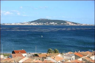 Dans quel étang le canal du Midi débouche-t-il, sur la commune de Marseillan ?