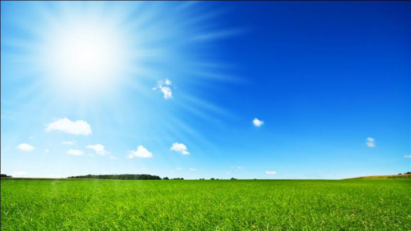 """Qui chantait """"Sous le soleil exactement"""" ?"""