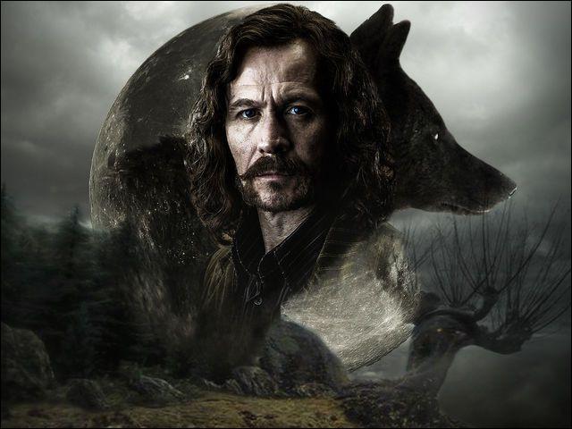 Qui est Sirius Black pour Drago Malefoy ?