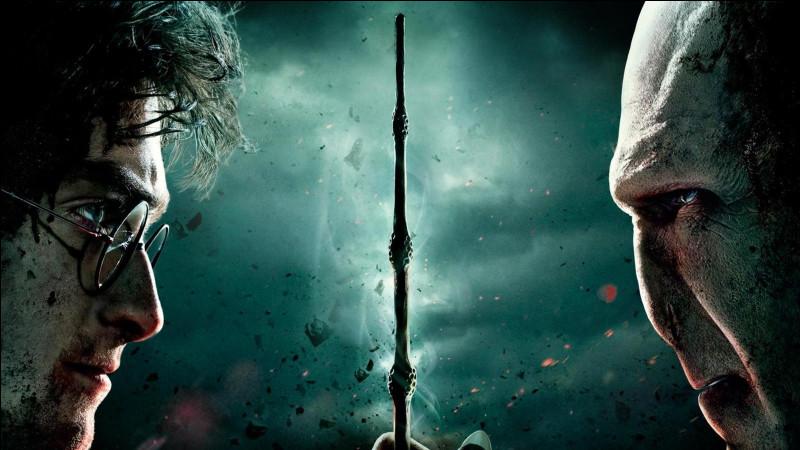 Dans le livre, que fait Harry avec la baguette de sureau ?
