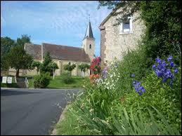 Commune du Centre-Val-de-Loire, dans la région naturelle du Perche, Trizay-Coutretôt-Saint-Serge se situe dans le département ...