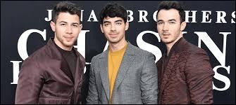 """Ce sont trois frères qui interprètent les chansons suivantes : """"Only Human, Sucker, Like It's Christmas""""..."""