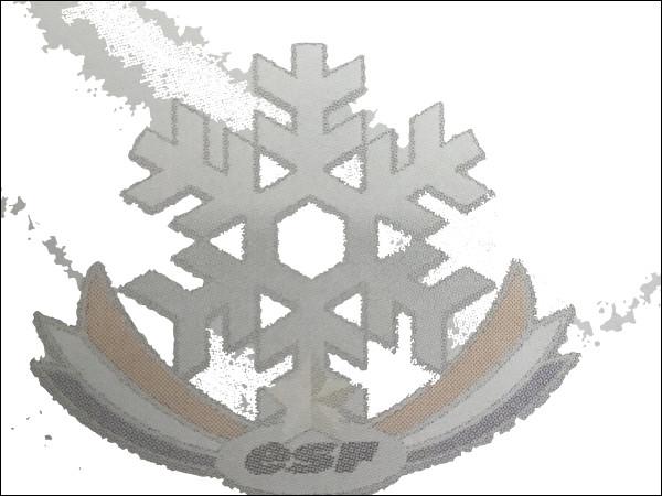 Quel est ce grade au ski ?
