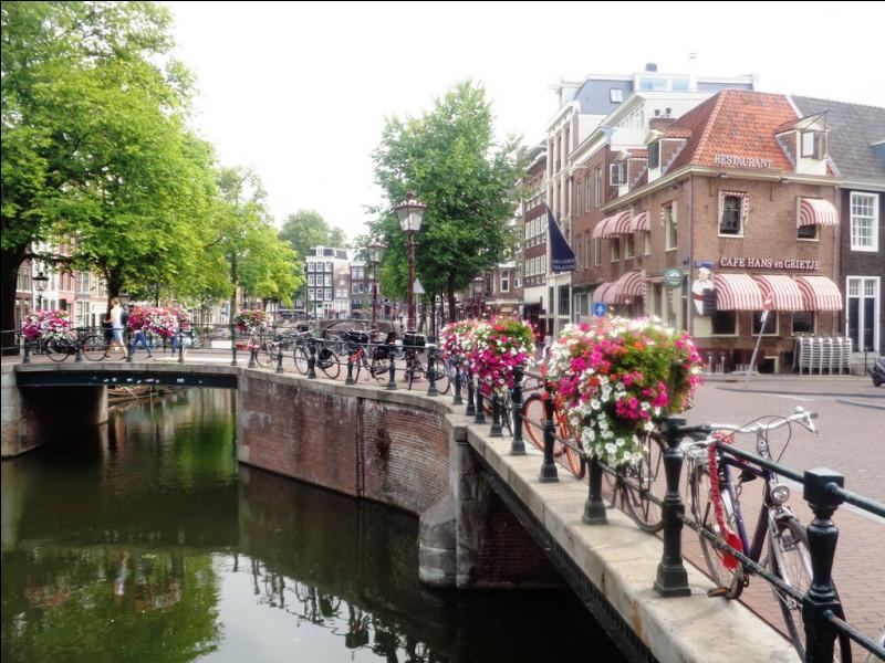 Terminons la partie européenne de notre périple à Amsterdam où vous ne découvrirez pas :
