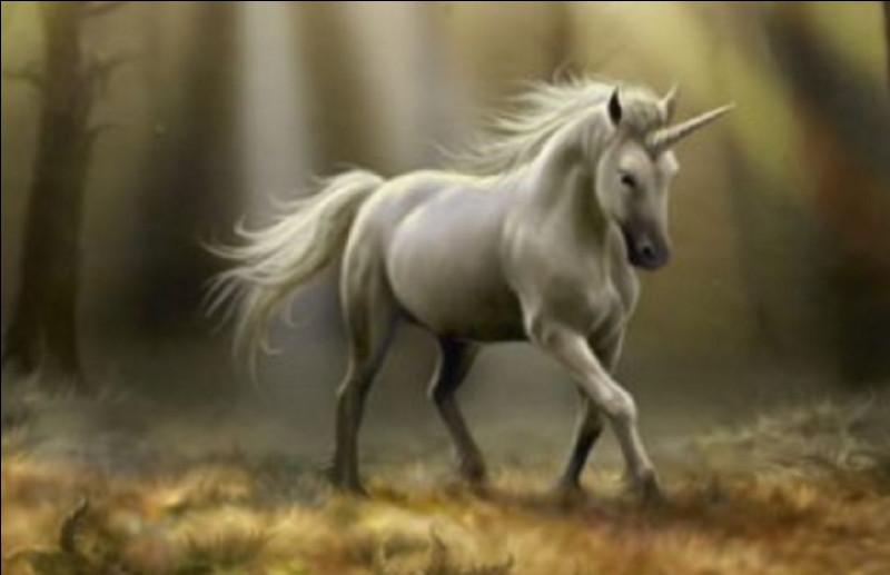 À quelle époque remontent les premières légendes de licornes ?