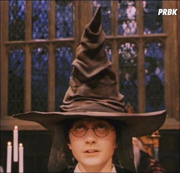 Dans quelle maison le choixpeau voulait-il envoyer Harry avant de l'envoyer chez les Griffondor ?