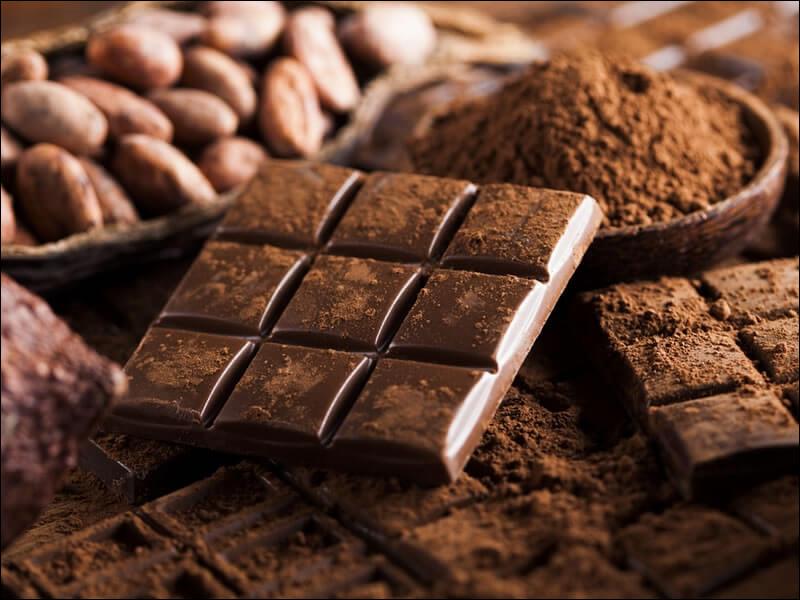 Qui est le premier navigateur à rapporter du chocolat en Europe, en 1519 ?