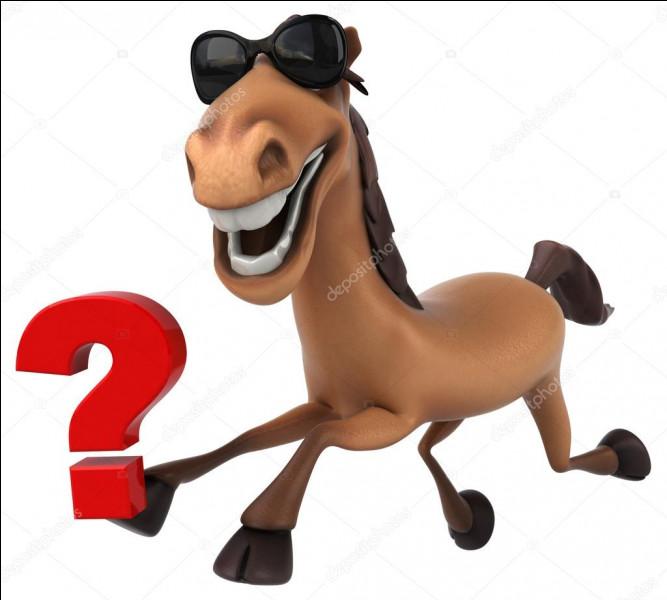 Qu'est-ce qu'un cheval bai ?