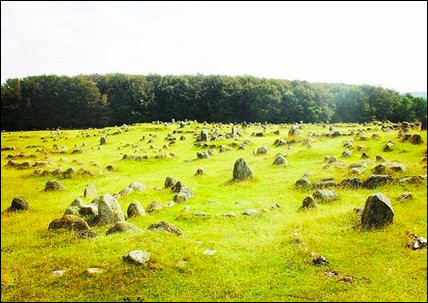 Pour finir, comme je vous sens un peu là, voici les célèbres alignements vikings de ...