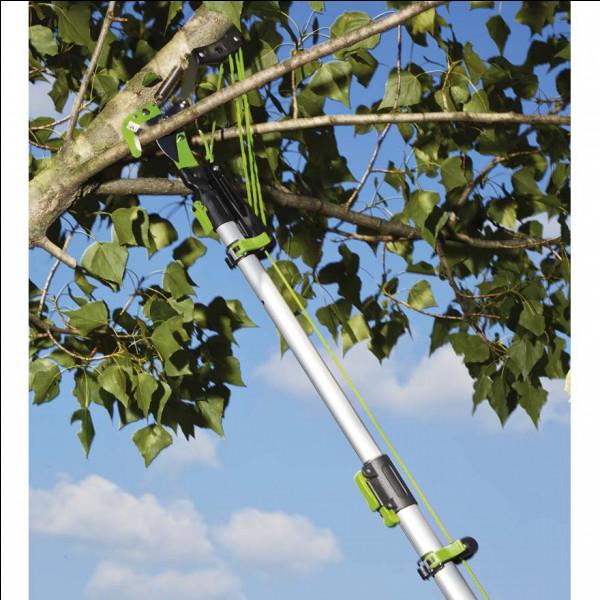 Cette serpe à long manche sert à émonder les arbres.