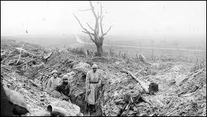 Surement l'une des batailles les plus meurtrières, Verdun opposait les soldats allemands aux soldats français en...