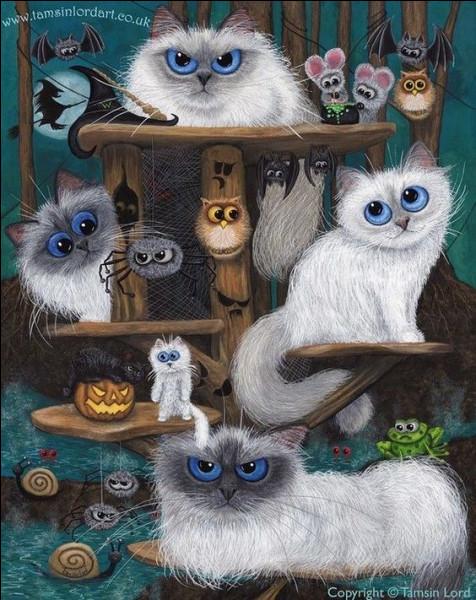 Quel était le nombre de chats polydactyles qu'Ernest Hemingway abritait sous son toit ?