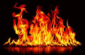 Lequel de ces signes astrologiques n'a pas pour élément le feu ?
